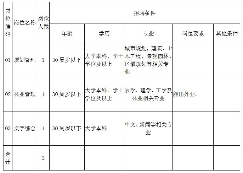 沈阳市自然资源局大东分局招聘公告
