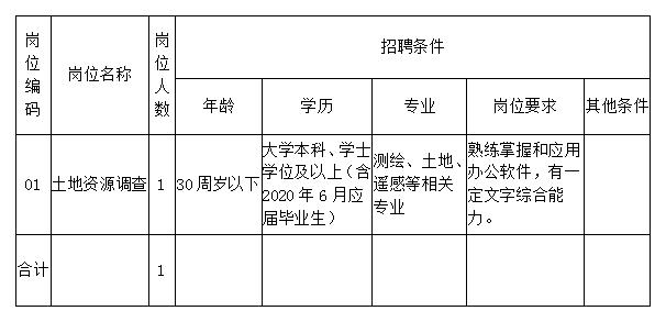 2020沈阳市土地储备中心大东分中心招聘1人公告