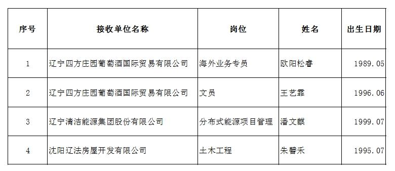 辽宁能源投资(集团)有限责任公司拟录用人员公示公告